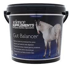 scienza integratori GUT Balancer per cavalli e pony-1.3kg-ideale per cavalli con...