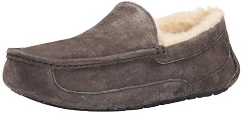 Ugg Ascot 5775, Chaussons homme