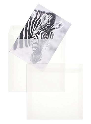 100 Stück, Transparente Briefumschläge, 215 x 215 mm, Haftklebung mit Abziehstreifen, Gerade Klappe, 100 g/qm Offset, Ohne Fenster, Weiß (Transparent-Weiß), Blanke Briefhüllen
