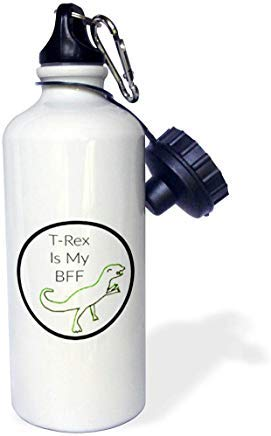 Carrie Merchant Frase Imagen de T Rex es mi mejor amigo Botella de agua de aluminio para deportes de color blanco Senderismo Gimnasio Escuela Camping Botella de agua para hombres, mujeres, niños