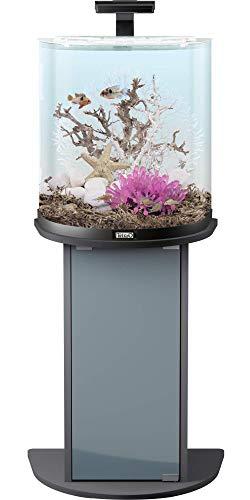 Tetra AquaArt Explorer Line Aquarium Komplett-Set 60 Liter anthrazit (gewölbte Frontscheibe, langlebige LED-Beleuchtung, ideal für die Haltung von tropischen Zierfischen) - 4