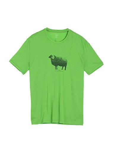 Merino Men'Icebreaker donna T-Shirt a maniche corte Tech Lite Ram Crewe momotour leggero Top