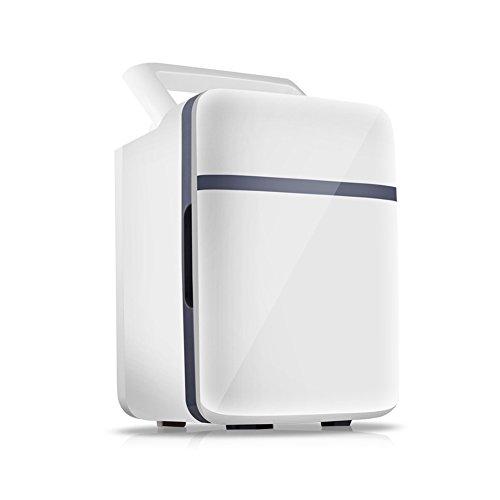 FJW Tragbarer Auto-Kühlschrank 10L Schnelle Kühlung 12V Autobenutzung 220V Familiennutzung Miniatur Auto Kühlschrank,Gray