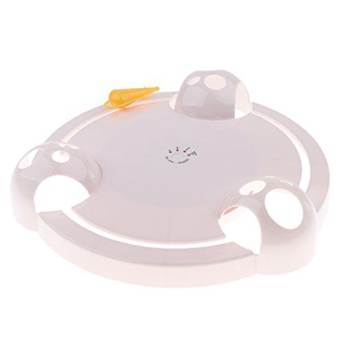D DOLITY Elektronische Katzenspielzeug Bewegliches Maus Spielzeug Batteriebetrieben