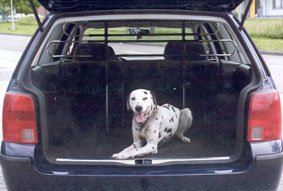 All Ride 871125227355 Rack For Dogs
