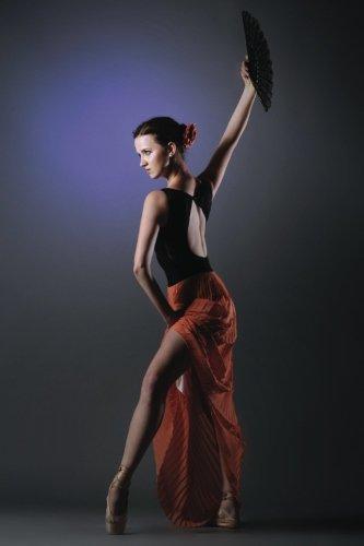 Flamenco Journal: Volume 29 (Dance 365 Lined) por N.D. Author Services