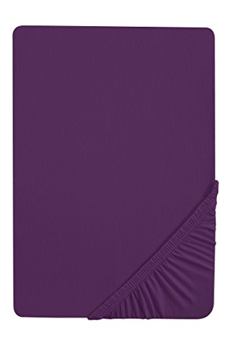 Biberna 7155/353/041, Drap housse en jersey stretch 100% coton, très doux et extensible, pour un lit de 140 x 200 cm à 160 x 200 cm, coloris violet foncé