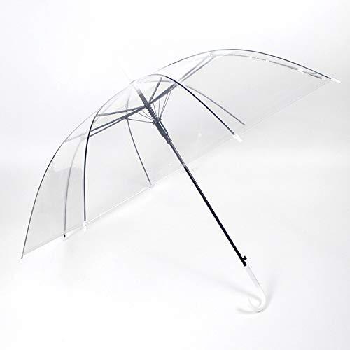qqyz Kinderdach-Karikatur Katze Umbrella Transparente Kinderschirm Halbautomatisch Niedlich Tierischen Regenschirm durchsichtig