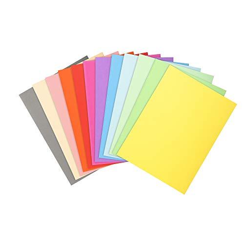 Exacompta Forever 410000E Packung mit 100 Aktendeckel (aus 220g/qm recyceltem Karton in Format 24 x 32 cm, ideal für DIN A4, farbig sortiert) 100 Stück