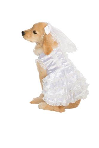 ween Classics Collection Pet Kostüm (Herren Animal Fancy Dress Kostüme)