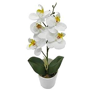 True Holiday – Arreglos de orquídeas artificiales con jarrón en porcelana blanca, flores y plantas artificiales para decoración de interiores, de plástico, diseño realista