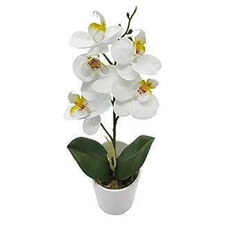 True Holiday Arreglos de Flores de orquídea Artificial con jarrón de Porcelana Blanca, Flores Artificiales y Plantas para decoración de Interiores, Flores de plástico, Realista y Realista.