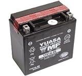 Yuasa - Batería yuasa ytx14l-bs