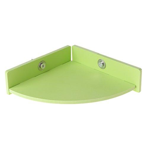 CADANIA Hamster Plattform Barsch Papagei Ständer Rack Ratte Eichhörnchen Sprungbrett Cage Spielzeug - Fan-Form - Grün
