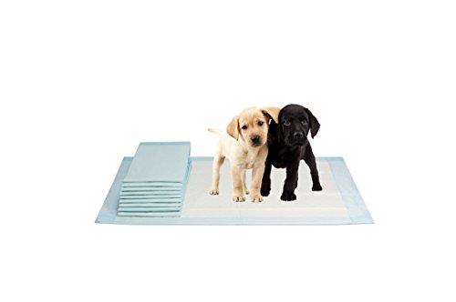 Artikelbild: VIDIMA Puppy-Pads in der Größe 60x60 cm | 10 Stück | mehrlagige Welpenunterlage für Tiere bei Inkontinenz | ideal als Trainingsunterlage bei Hunde-Training | saugstarke & rutschfeste Unterseite