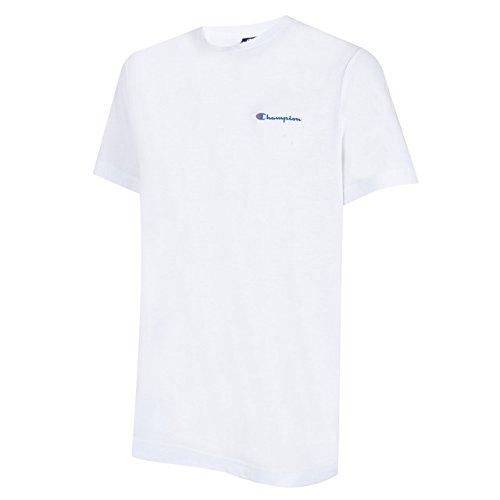 champion-herren-t-shirt-institutionals