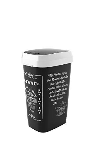 Abfalleimer Dual Swing Bin, als Schwing oder Klappdeckel nutzbar, platzsparend, Inhalt mit Motiv 50 L, circa 42 x 31 x 62cm-h, schwarz - Swing Bin