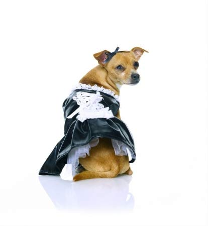 Halloween Kostüm Maid - Rubie's French Maid Pet Halloween-Kostüm, s, Schwarz