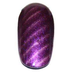 Vernis magnetique Astra violet 12ml