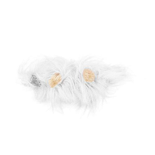 höne Haustier Kostüm Lions Mähne Perücke für Katze Halloween Christmas Party Dress Up mit Ohr Haustier Bekleidung Katze Kostüm - Weiß - M ()