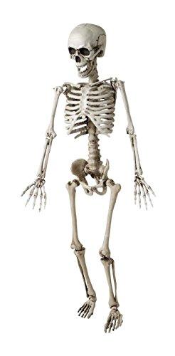 Widmann vd-wdm7799k scheletro posabile, taglia unica