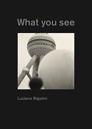 Luciano Rigolini What You See