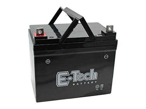 Batterie 12V 22Ah (+ Pol Links) passend MTD Smart RN 145 13AM765N600