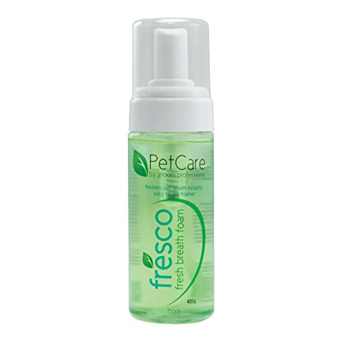 GROOM PROFESSIONAL Fresco Foam Breath Freshener, 150 ml