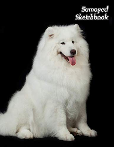 Samoyed Sketchbook: Sammy   Unlined Notebook 150 Blank Pages 8.5 x 11 in.   Sketchbook   Multi-Purpose   Unruled Journal   Plain Diary   Agenda   Composition Book   Drawing Book