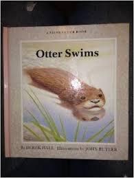 Otter swims