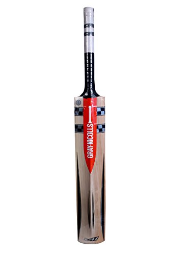 Gray-Nicolls-Oblivion-E41-GN-65-English-Willow-Bat-Short-Handle