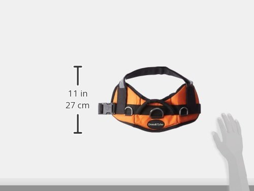 Dean & Tyler DT Works Certified Police Dog Dog Harness, Fits Girth Size 25-Inch to 34-Inch, Small, Orange/Black 3