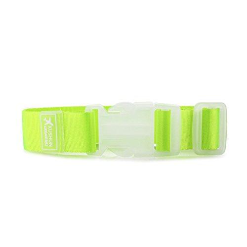 Tasche Klemmbügel (WINOMO Gepäck Halter Gripper Klemmbügel für Taschen Koffer (hellgrün))