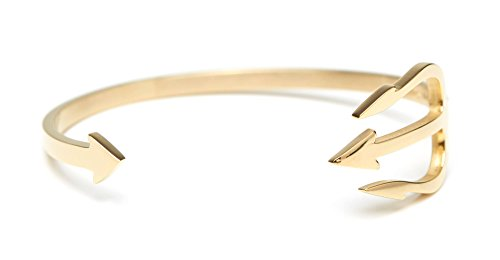 James Wheland  Trident Armreif Armband Offen aus Hochwertigem Edelstahl