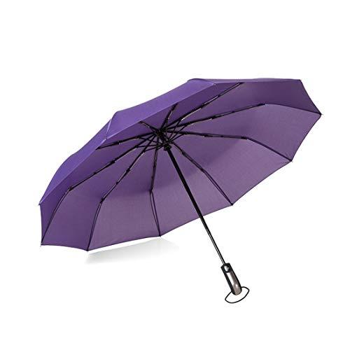 Jakiload Kompakter Reise-Regenschirm mit winddichtem, doppeltem Baldachin-BAU-Reise-Regenschirm. Winddicht (Color : Purple) -