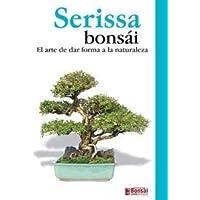 Guía bonsái Serissa