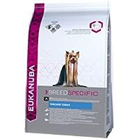 Eukanuba Premium Hundefutter für Yorkshire Terrier, Trockenfutter mit Huhn (1 x 2 kg)