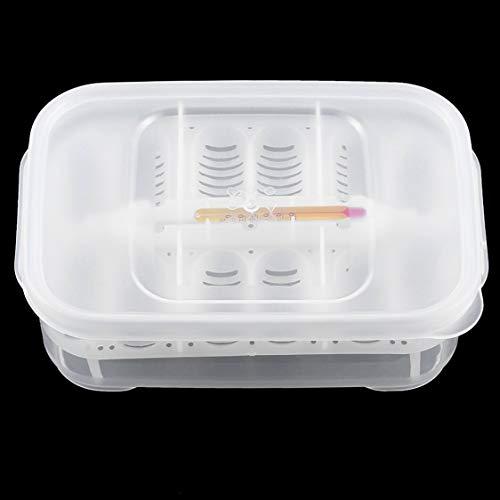 vige Praktische Kunststoff 12 Löcher Reptil Ei Inkubationsschale mit Thermometer Inkubation Schlange Eier Inkubationswerkzeug - Elektro-schlangen