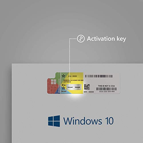 Windows 10 Home OEM French