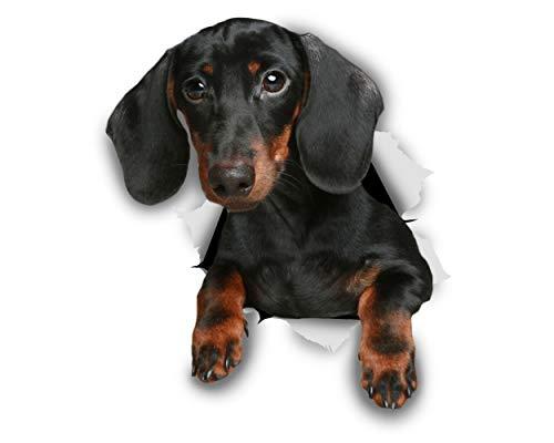 Winston & Bear Pegatinas 3D perro - 2 Pack - negro