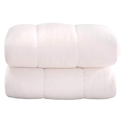 MYYDD Komfortable 100{9ea5589d252c8ef76bef207217e73e54a465d100846c3be0edfd928c5a7f9086} Baumwolle Steppdecke extra Dicke & warme Bettdecke/Steppdecke Anti Allergie Quilt Core 3 kg handgefertigt,200x230cm