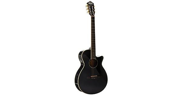ibanez aeg10nii-bk guitare electro-acoustique avec cordes en nylon noir