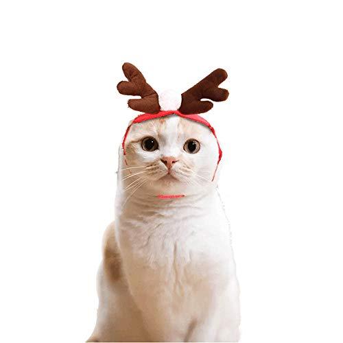 (Fenverk 1Pc Weihnachten KostüM Haustier Katze Hund Geweih Hut Deckel Kleider Rentier HöRner Kopfbedeckung HüNdchen KäTzchen Stirnband Halsband Süß Cosplay Ankleiden VorräTe)