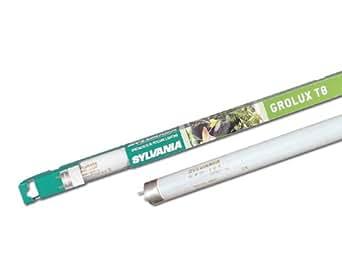 Sylvania Grolux–lampe fl. Grolux f38W T-8blister