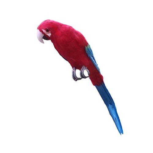 Sharplace Künstliche Vögel Gefiederter Vogel Tiervogel Garten Figur Dekofigur Dekoration Vogel Scarer Garten Ornament - Großer Papagei