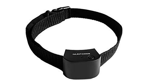 NUM'AXES Extra Collar Canifugue Small 1 Unidad 21