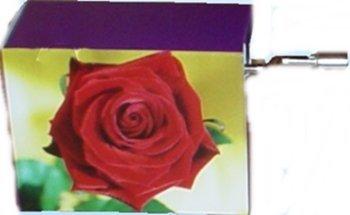 Art&Music, rote Rose vor gelbem Hintergrund, Melodie: Happy Birthday