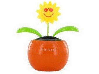 Flip Flap Blume Solar Sonnenblume mit Sonnenbrille Topf Bunt