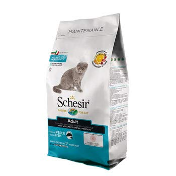 SCHESIR CAT Maintenance Pesce 10 Kg.
