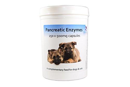Bauchspeicheldrüsenkrebs Enzyme für Hunde & Katzen - 250 capsules pancreatic enzymes -